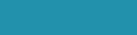 FatFish-Logo-teal